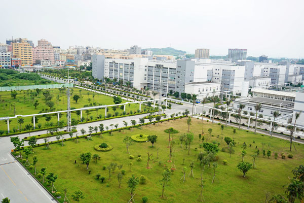 Campus afforestation